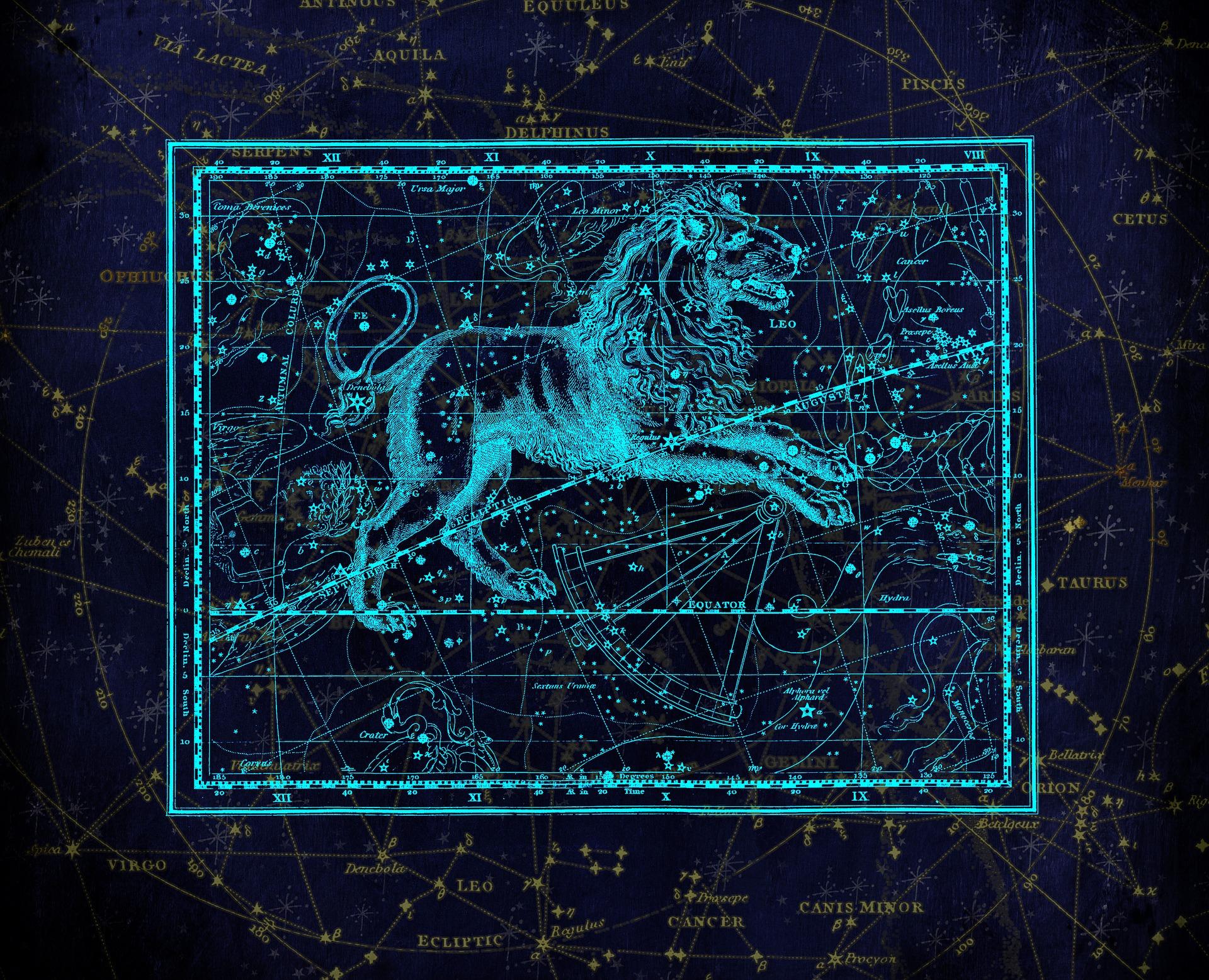 Le lion – Du 23 Juillet au 22 août